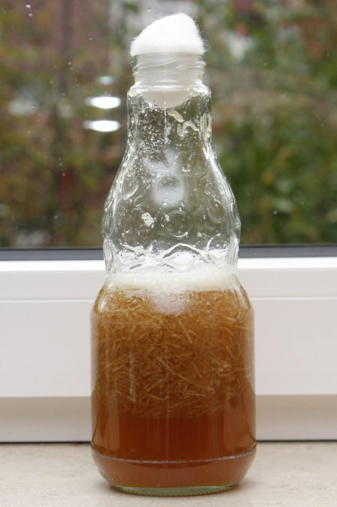 Fertiger Gäransatz in der Flasche auf der Fensterbank